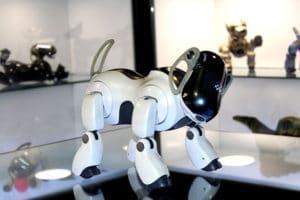 El museo del robot, tienda juguetrónica