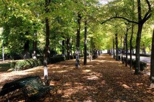 Siete sitios preciosos para conocer el otoño en Madrid
