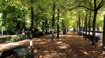 Aranjuez-otoño