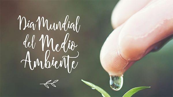 Dia-Mundial-del-Medio-Ambiente-2018-Pozuelo