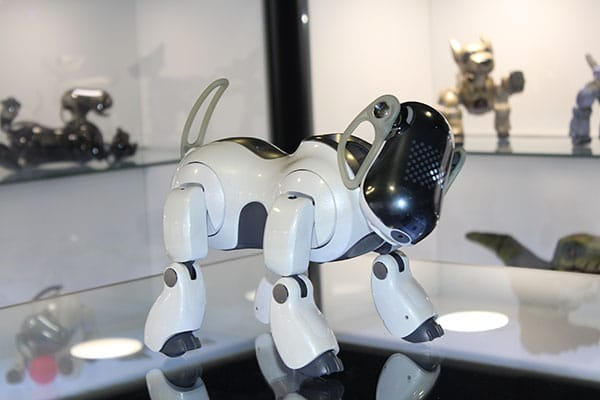 Museo-del-robot
