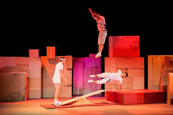 ludo-circo-show