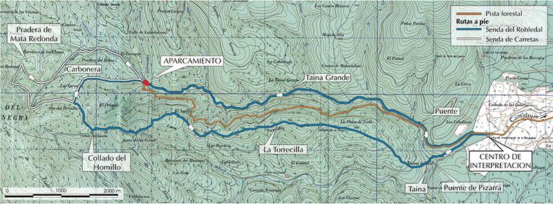 Rutas-Hayedo-de-Tejera-Negra