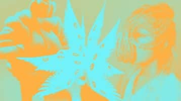 transfiguracion-efimera